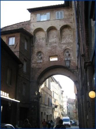 Siena312